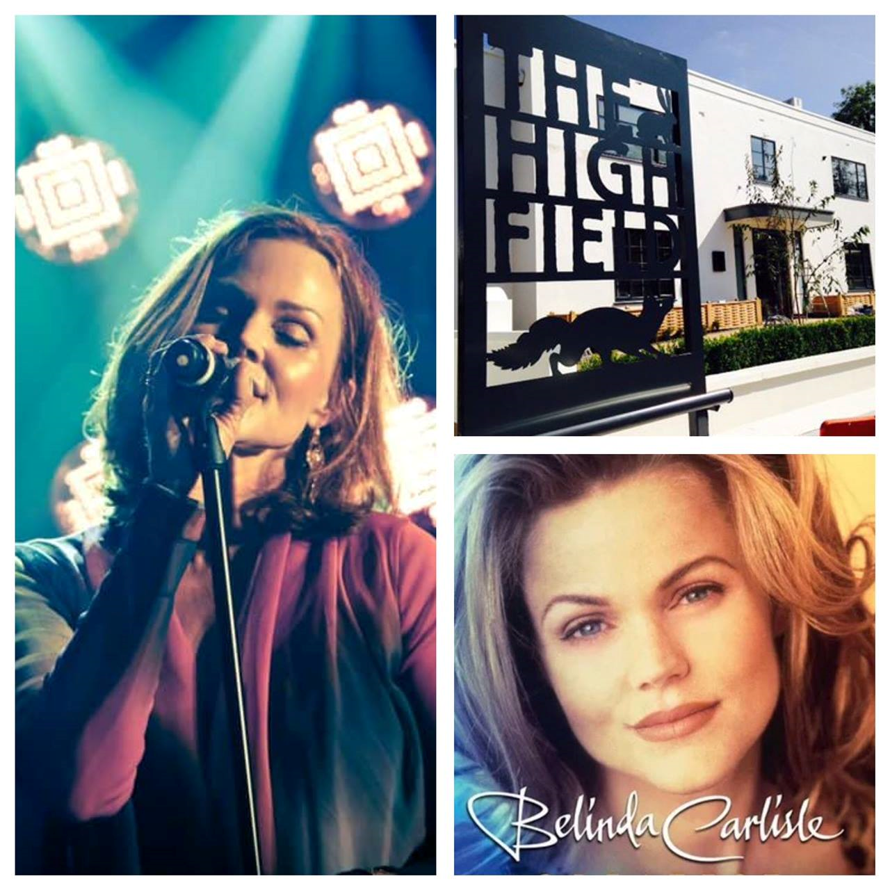 Belinda Carlisle meets The High Field for a Charity Dinner